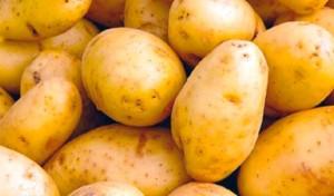patate-regime