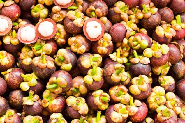 les fruits du garcina cambogia
