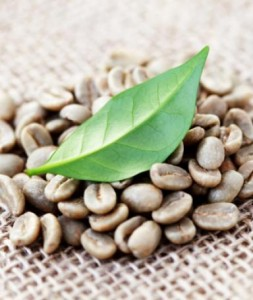 green-coffee-bean-extract-329x390