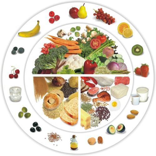 cercle alimentaire