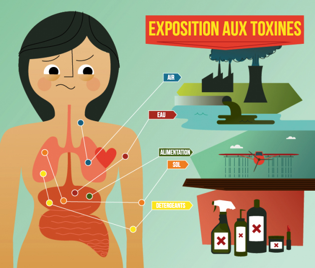 infographie exposition aux toxines