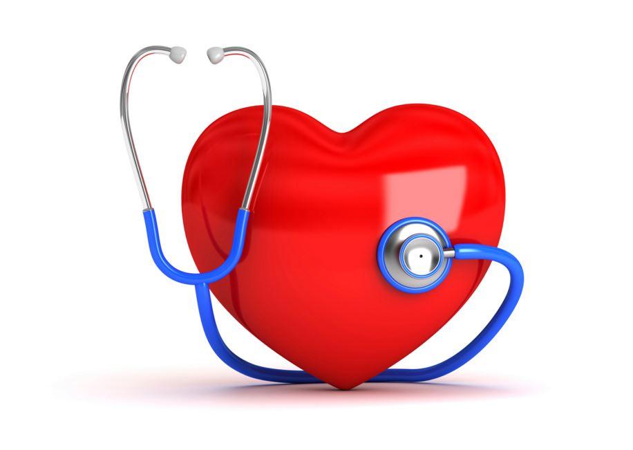 aliments gras et maladies du coeur