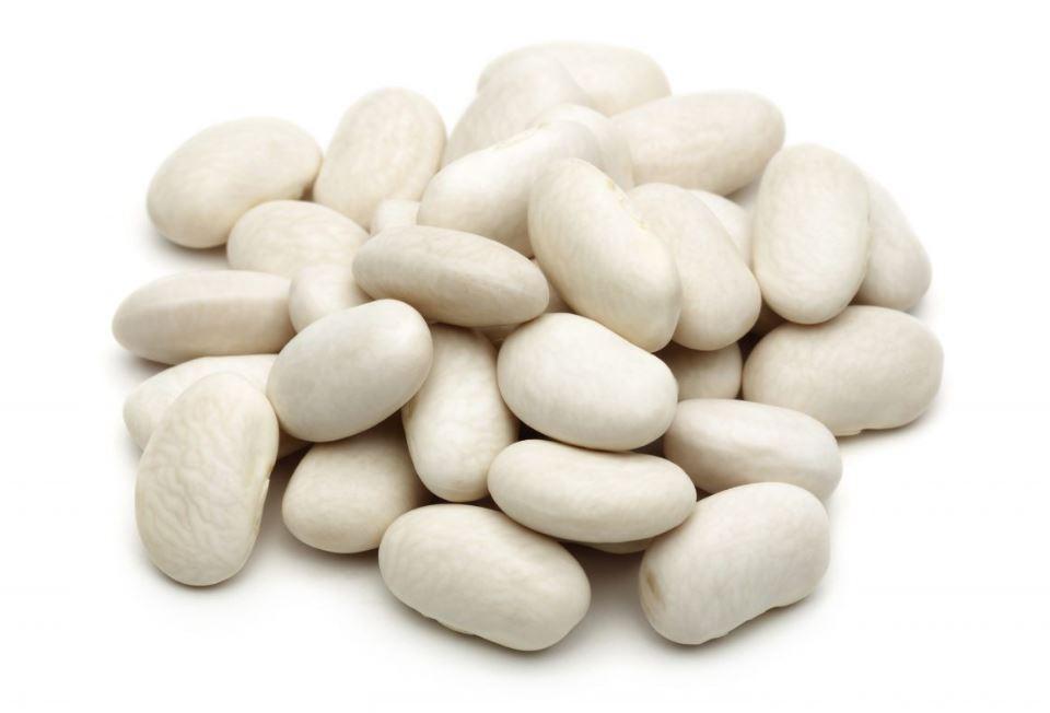 les haricots blancs