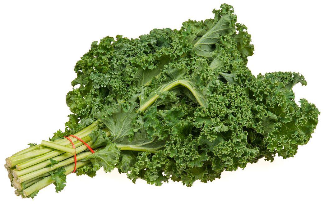 aliment chou kale