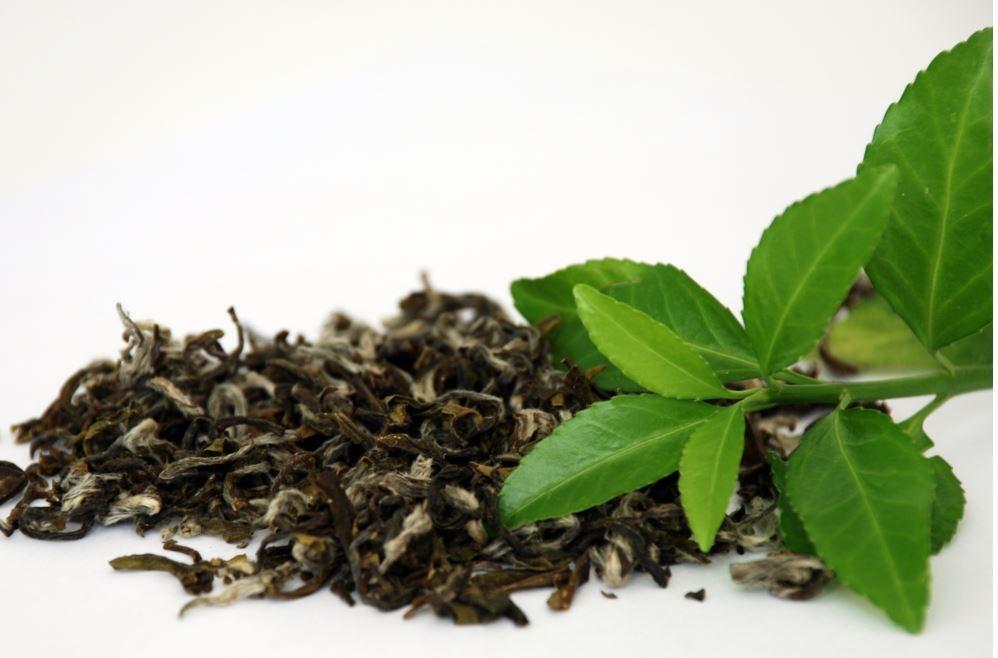 thé jiaogulan
