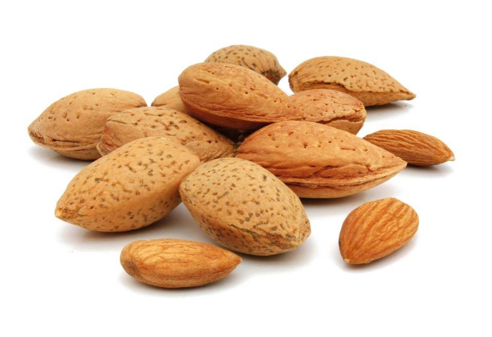 sources de bonnes graisses les amandes